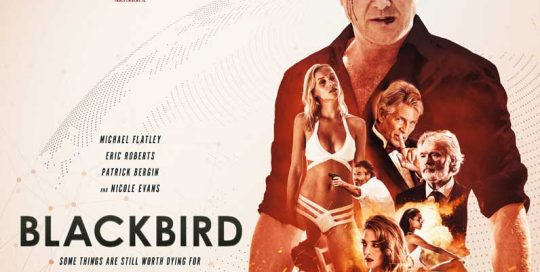 Blackbird, film poster, movie poster, film poster design, movie poster design, drama poster, movie drama poster, film drama poster , 2018